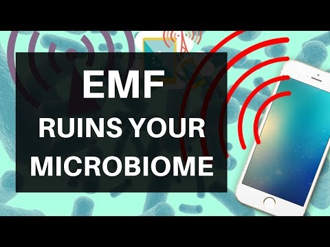 EMF Ruins Your Microbiome: Wifi, Cellphones & Your Bacteria
